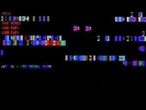 digital video / 4:3 / loop / 2010